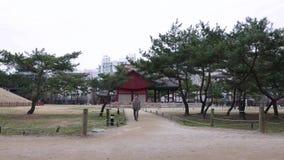 Paseo coreano del hombre en parque contra el edificio viejo tradicional, Seul, Corea del Sur almacen de video