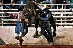 Paseo de Bull del rodeo Foto de archivo libre de regalías
