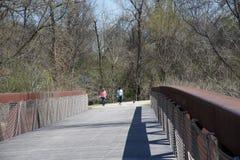 Paseo de dos personas un perro sobre el puente de Wolf River Imagen de archivo libre de regalías