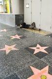 Paseo de Hollywood del hombre sin hogar en la calle, acera de la fama Imagenes de archivo
