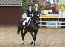 Paseo de K.Kovaleva en el caballo Afrodite-02 Imagen de archivo