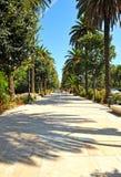 Paseo de la Alameda, Malaga, Costa del Sol, Spanien Arkivfoton