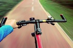 Paseo de la bici en el bosque Fotografía de archivo