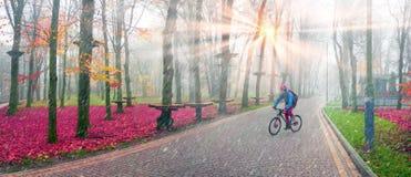 Paseo de la bici entre el otoño y el invierno Fotos de archivo