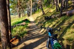 Paseo de la bicicleta en una trayectoria de bosque hermosa en verano fotos de archivo