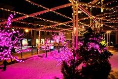 Paseo de la ciudad en la noche en invierno Callejón con las luces, árboles, guirnaldas Fotografía de archivo
