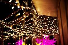 Paseo de la ciudad en la noche en invierno Callejón con las luces, árboles, guirnaldas Fotos de archivo libres de regalías