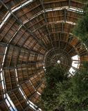 Paseo de la copa en el bosque bávaro - Alemania Fotografía de archivo