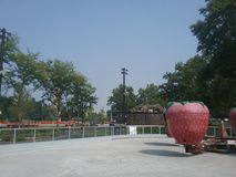Paseo de la fresa Imagen de archivo