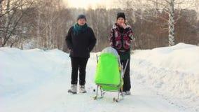 Paseo de la gente en el bosque del invierno metrajes