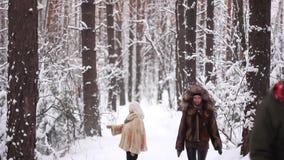 Paseo de la gente en el bosque del invierno almacen de video