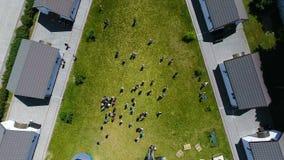 Paseo de la gente en la hierba almacen de metraje de vídeo
