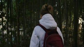 Paseo de la muchacha a través de los matorrales de bambú almacen de video