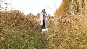 Paseo de la mujer con el perro almacen de metraje de vídeo