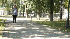 Paseo de la mujer con el perro en parque Muchacha embarazada Mujer embarazada en parque almacen de video