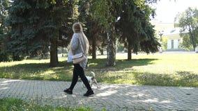 Paseo de la mujer con el perro en parque Muchacha embarazada Mujer embarazada en parque almacen de metraje de vídeo
