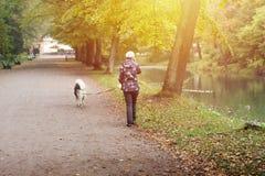 Paseo de la mujer con el perro en la trayectoria del parque, hablando por el teléfono Imágenes de archivo libres de regalías