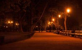 Paseo de la noche en un parque Foto de archivo libre de regalías