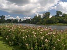 Paseo de la orilla del lago Foto de archivo libre de regalías