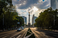 Paseo de La Reforma aveny och ängel av självständighetmonumentet - Mexico - stad, Mexico Arkivfoton