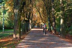 Paseo de los ciclistas a lo largo del callejón de la ciudad fotografía de archivo