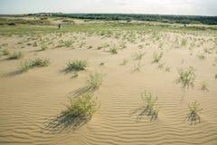 Paseo de los turistas en las dunas Fotos de archivo libres de regalías