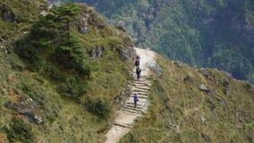 Paseo de los turistas a lo largo de un rastro de alta montaña almacen de metraje de vídeo