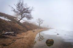 Paseo de niebla a lo largo de la costa del río imagenes de archivo