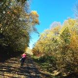 Paseo de octubre Fotos de archivo