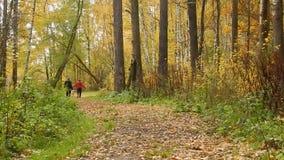 Paseo de una más vieja gente con los animales en la caída de la hoja del otoño metrajes