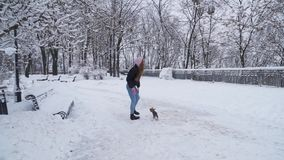 Paseo de Yorkie en el correo con el dueño al aire libre Pequeño terrier de Yorkshire que corre con la muchacha en un parque nevad metrajes