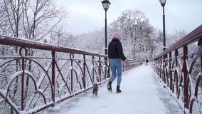 Paseo de Yorkie en el correo con el dueño en el puente Pequeño terrier de Yorkshire que corre con la muchacha en un parque nevado metrajes
