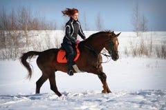 Paseo del caballo del invierno Fotografía de archivo