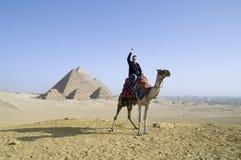 Paseo del camello en Egipto fotografía de archivo