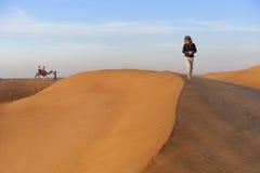 Paseo del camello en el desierto Imágenes de archivo libres de regalías
