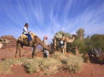 Paseo del camello en Jordania Fotos de archivo libres de regalías