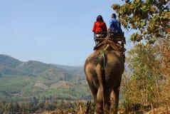 Paseo del elefante Imágenes de archivo libres de regalías