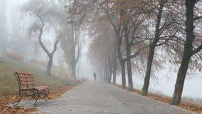 Paseo del hombre por mañana de niebla de la ciudad del otoño metrajes