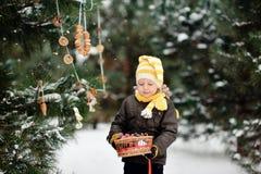 Paseo del invierno Fotos de archivo libres de regalías