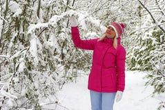 Paseo del invierno en la madera Imágenes de archivo libres de regalías
