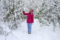 Paseo del invierno en la madera Fotografía de archivo libre de regalías