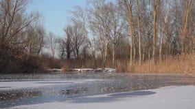 Paseo del invierno en los lagos Día de congelación almacen de metraje de vídeo