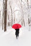 Paseo del invierno Nevado fotos de archivo