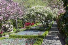 Paseo del jardín Imagenes de archivo