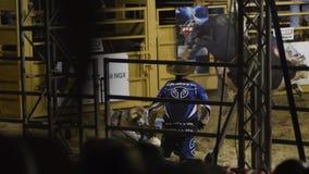 Paseo del jinete de Bull su tiro del toro almacen de metraje de vídeo