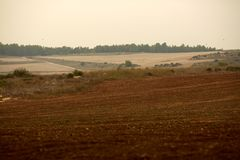Paseo del otoño en el campo y en el bosque Foto de archivo