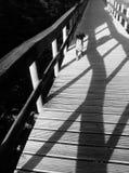 Paseo del perro a la playa imagen de archivo libre de regalías