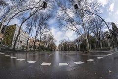 Paseo del Prado Madrid, 11 Maart, 2018 spanje Royalty-vrije Stock Afbeelding