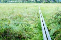 Paseo del tablero en hierba Fotos de archivo