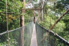 Paseo del toldo. Malasia Foto de archivo libre de regalías